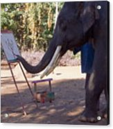 Asian Elephant Painting Picture Acrylic Print