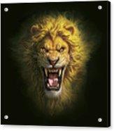 Aslan Acrylic Print