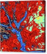 Asleep At The Gate 14 Acrylic Print