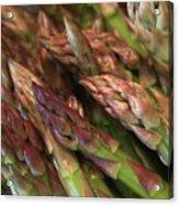 Asparagus Tips Acrylic Print