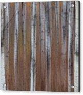 Aspen Abstract Vertical Acrylic Print
