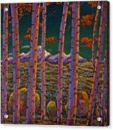 Aspen At Night Acrylic Print