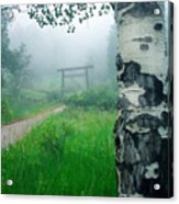 Aspen Gate Mist Acrylic Print