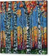 Aspen Grove By Olena Art Acrylic Print