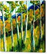 Aspen Highlands Acrylic Print