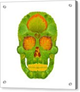Aspen Leaf Skull 10 Acrylic Print