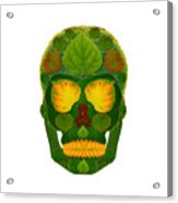 Aspen Leaf Skull 9 Acrylic Print