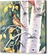 Aspen Light Acrylic Print by Patricia Pushaw