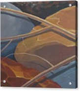 Aspen Rain Branch2 Acrylic Print