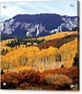 Aspen Vista Acrylic Print