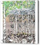 Aspendoodle Acrylic Print