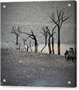 Asphalt Oasis Acrylic Print by Sabine Stetson