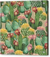 Assorted Blooming Cactus Plants Acrylic Print
