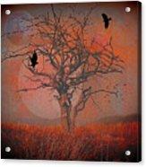 at Dusk Acrylic Print