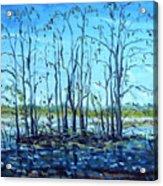 At Loxahatchee Acrylic Print
