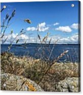 At Point Lawrence Acrylic Print