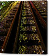 At The End Of A Railroad Track Acrylic Print