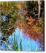 At The Pond Acrylic Print