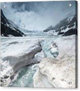 Athabasca Glacier, Alberta, Canada Acrylic Print
