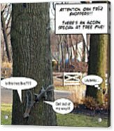 Attention Oak Tree Shoppers Acrylic Print