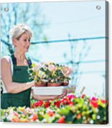 Attractive Gardener Selecting Flowers In A Gardening Center. Acrylic Print