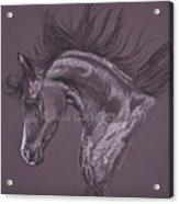 Aubergine Arabian Iv Acrylic Print