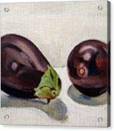 Aubergines Acrylic Print