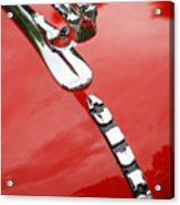 Auburn Speedster Acrylic Print
