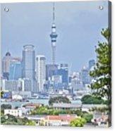 Auckland City C B D Acrylic Print