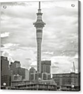 Auckland New Zealand Sky Tower Bw Texture Acrylic Print