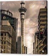 Auckland Sky Tower Acrylic Print