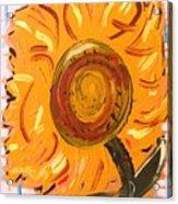 August 7 Late Day Sunflower Acrylic Print