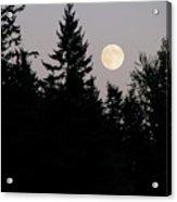 August Full Moon - 2 Acrylic Print