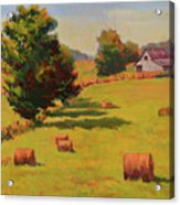 August Hay Field Acrylic Print