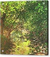August Shade Acrylic Print