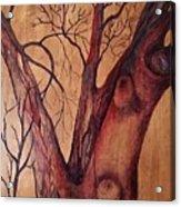 Mystical Tree Acrylic Print
