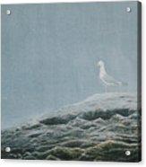 Aura At Odiorne Acrylic Print
