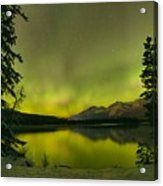 Aurora Over The Forest Acrylic Print