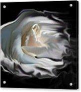 Aurora Rosealis Acrylic Print