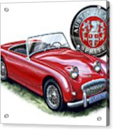 Austin Healey Bugeye Sprite Red Acrylic Print by David Kyte