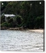 Australia - Hideout On Palm Beach Acrylic Print