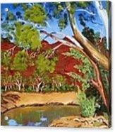 Australian Billabong Acrylic Print