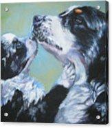Australian Shepherd Mom And Pup Acrylic Print