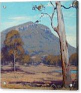 Australian Summer Hartley Acrylic Print by Graham Gercken