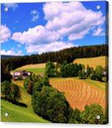 Austrian Rural Forest Vista Acrylic Print