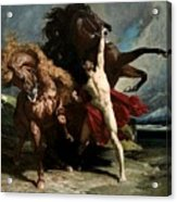 Automedon With The Horses Of Achilles Acrylic Print