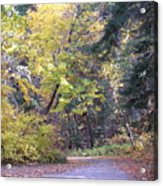 Autum Colors Acrylic Print