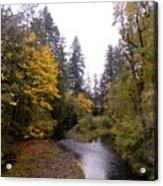 Autum In Oregon Acrylic Print