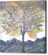 Autum Tree Acrylic Print