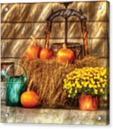 Autumn - Pumpkin - A Still Life With Pumpkins Acrylic Print